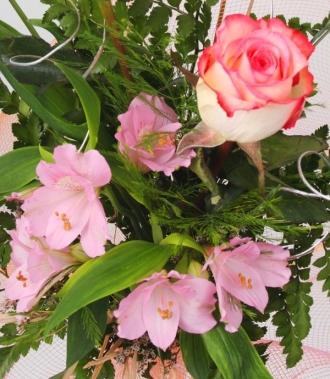 Астромерия и рози