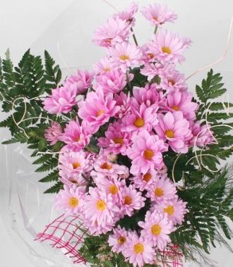 Цветя хризантеми