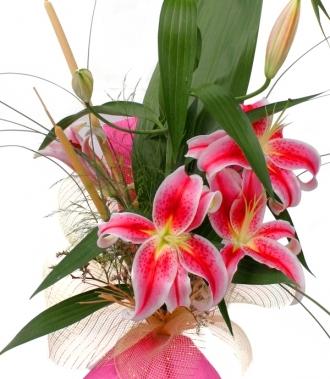 Цветя лилиум