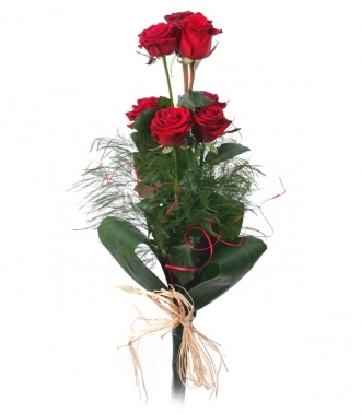 Rose bouquet 7 pcs.