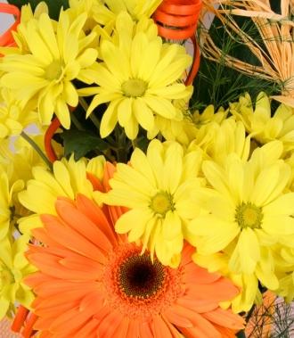 Хризантема и гербер