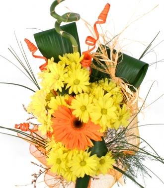 Хризантеми и гербери