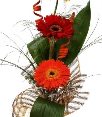 Магазин за цветя - гербери