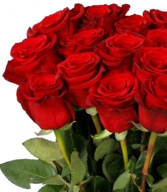 Сто и една рози